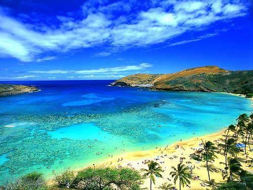 Bild från www.oursurprisingworld.com
