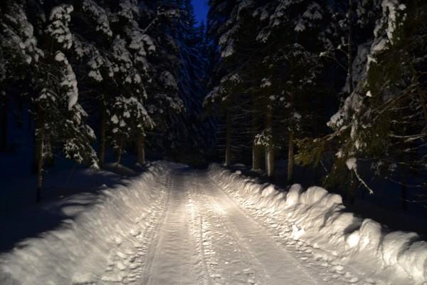 Skogsvägar