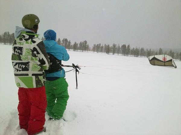 En mulen och snöig dag i Ylläs