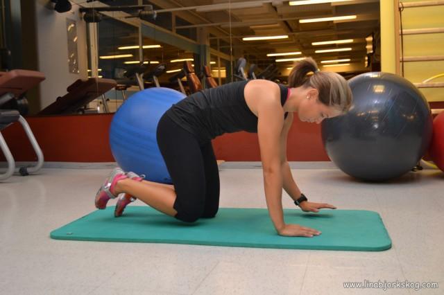 Statiska hunden - träning av inre magmuskler