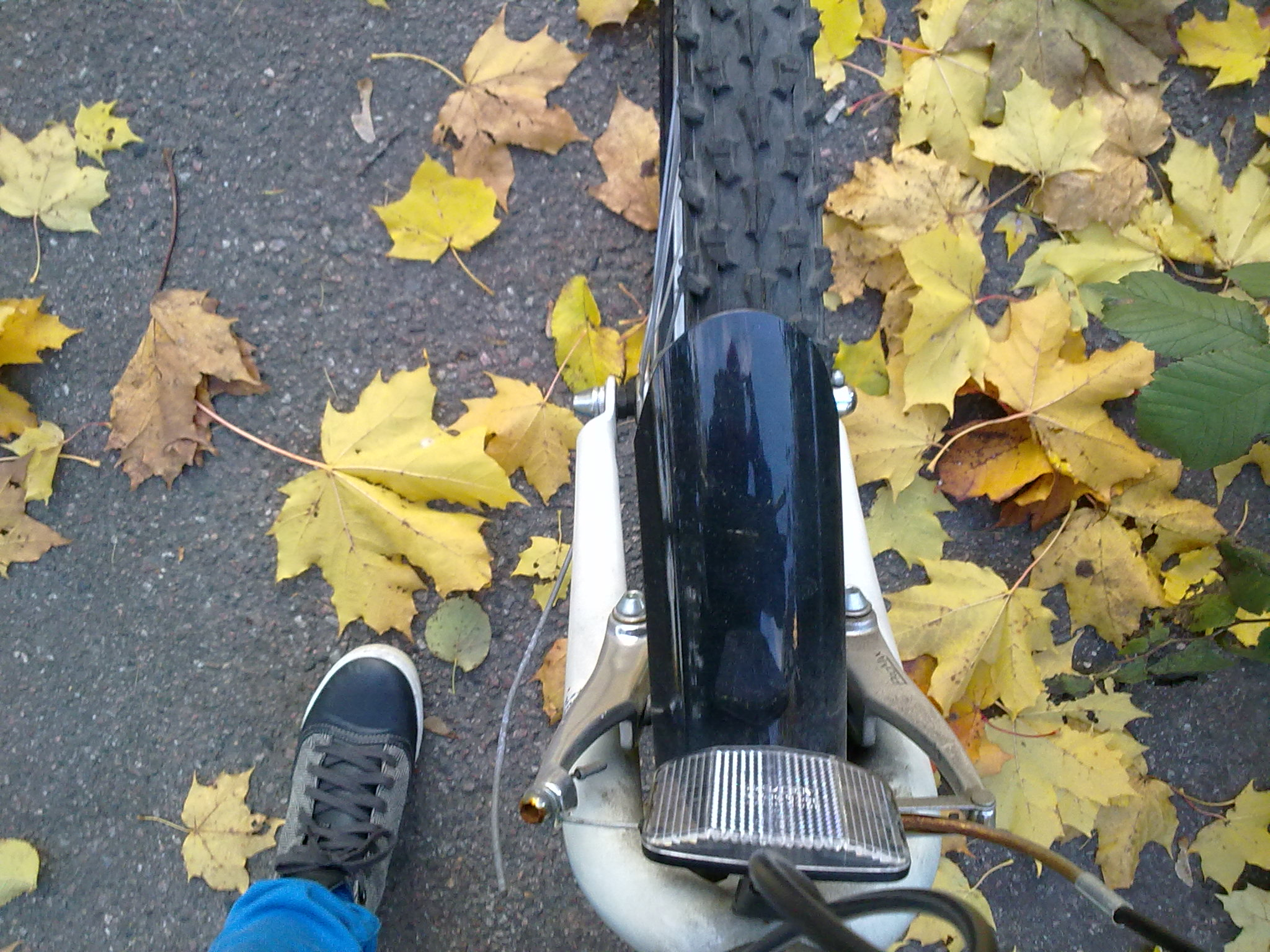 Dagens övning: Cykelskuff i uppförsbacke