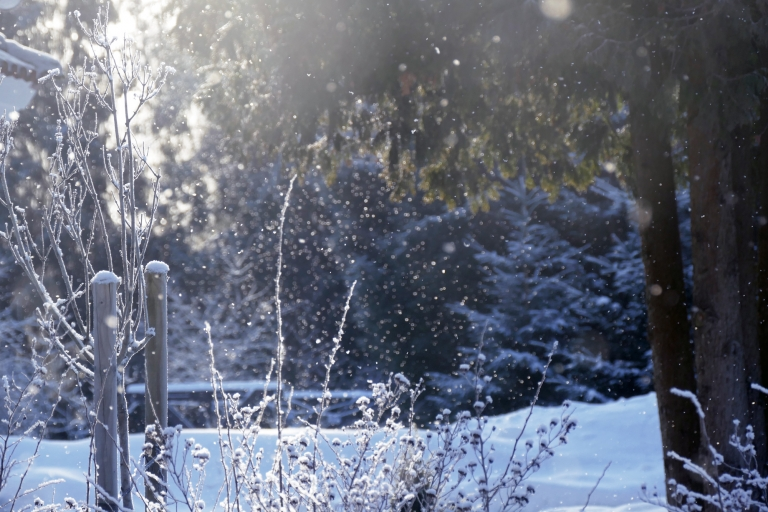Kan man träna vid förkylning? Checklista för dig som är förkyld och sugen på träning