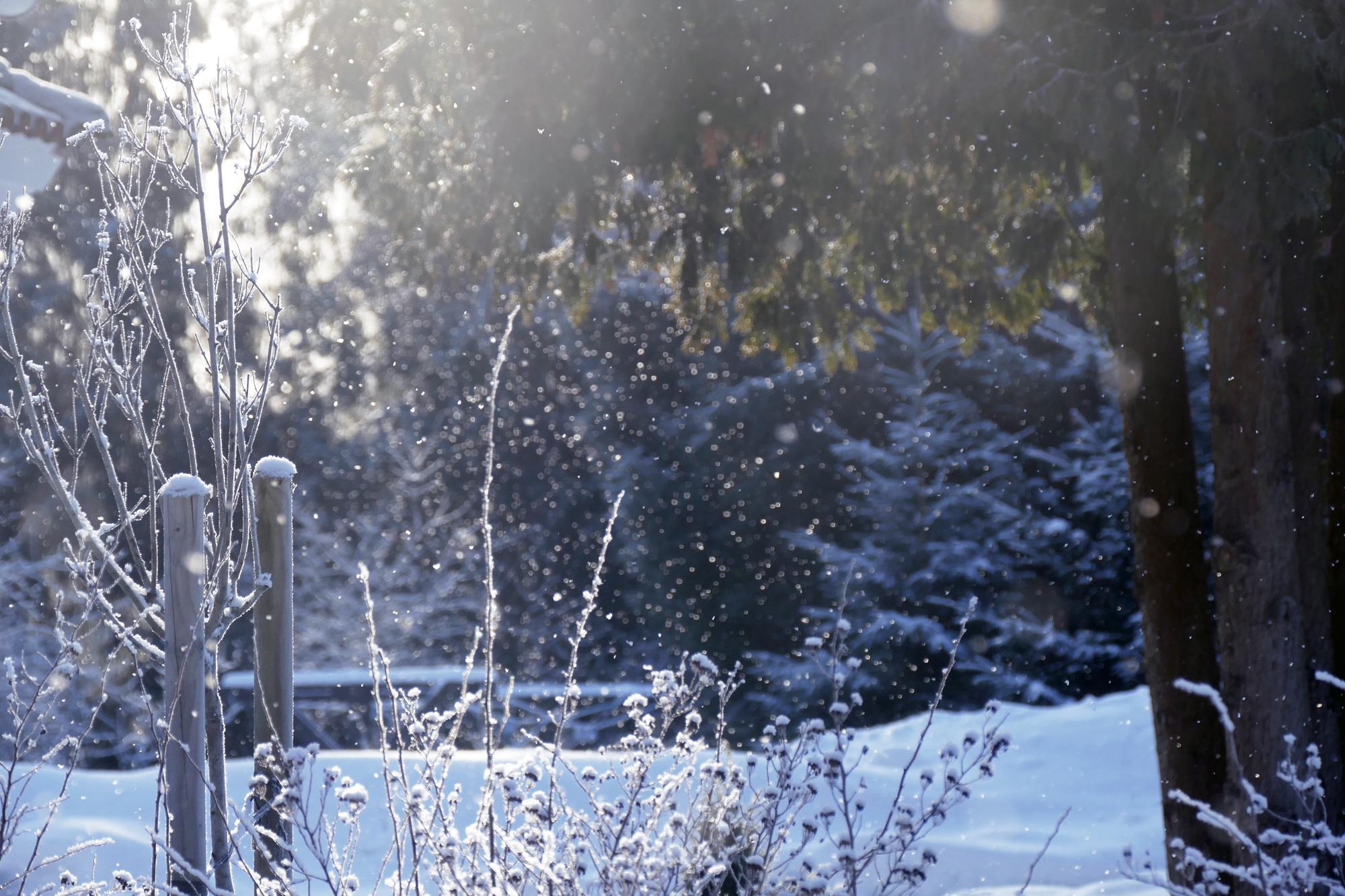 träna med förkylning checklista vinter