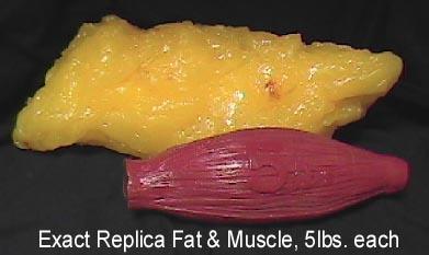 2,2 kilo fett och 2,2 kilo muskler