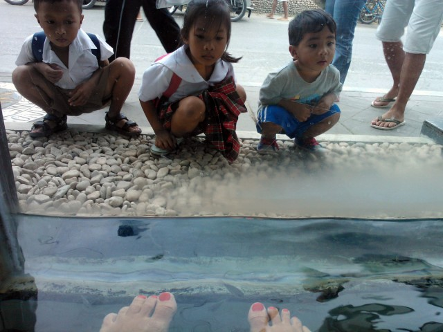 Fiskspa på Boracay