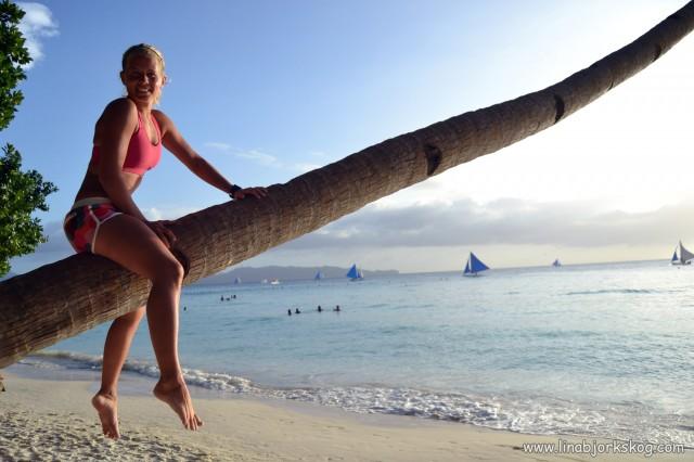 klättra i palm strand boracay