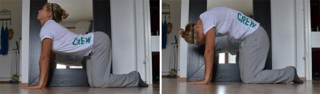 Denna övning tränar rörligheten i hela ryggen