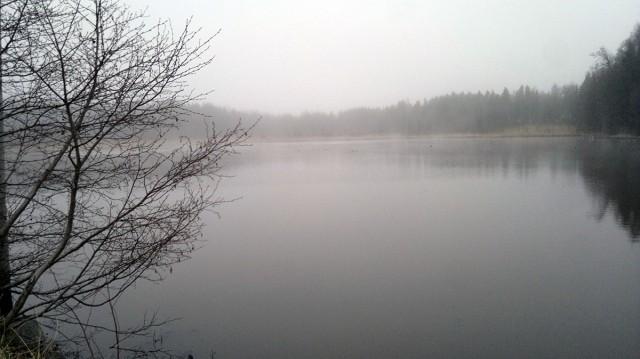 löpning dimma