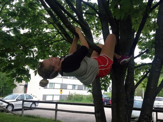 klättring i träd