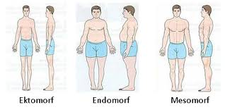Öka fettförbränningen och träna efter din kroppstyp