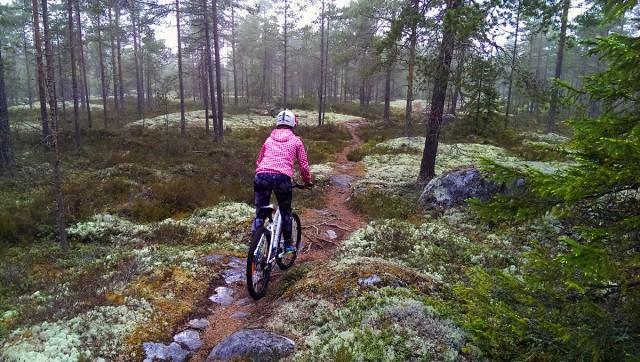 cykling fäboda