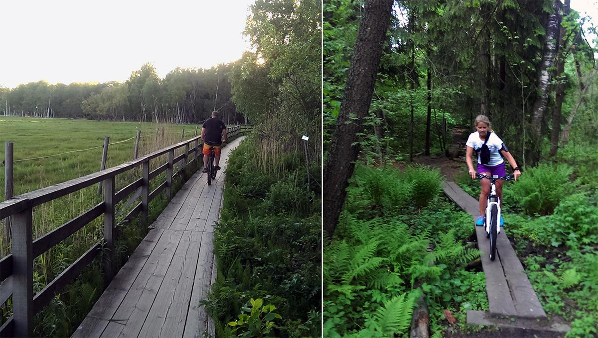 Off-road mountainbiking