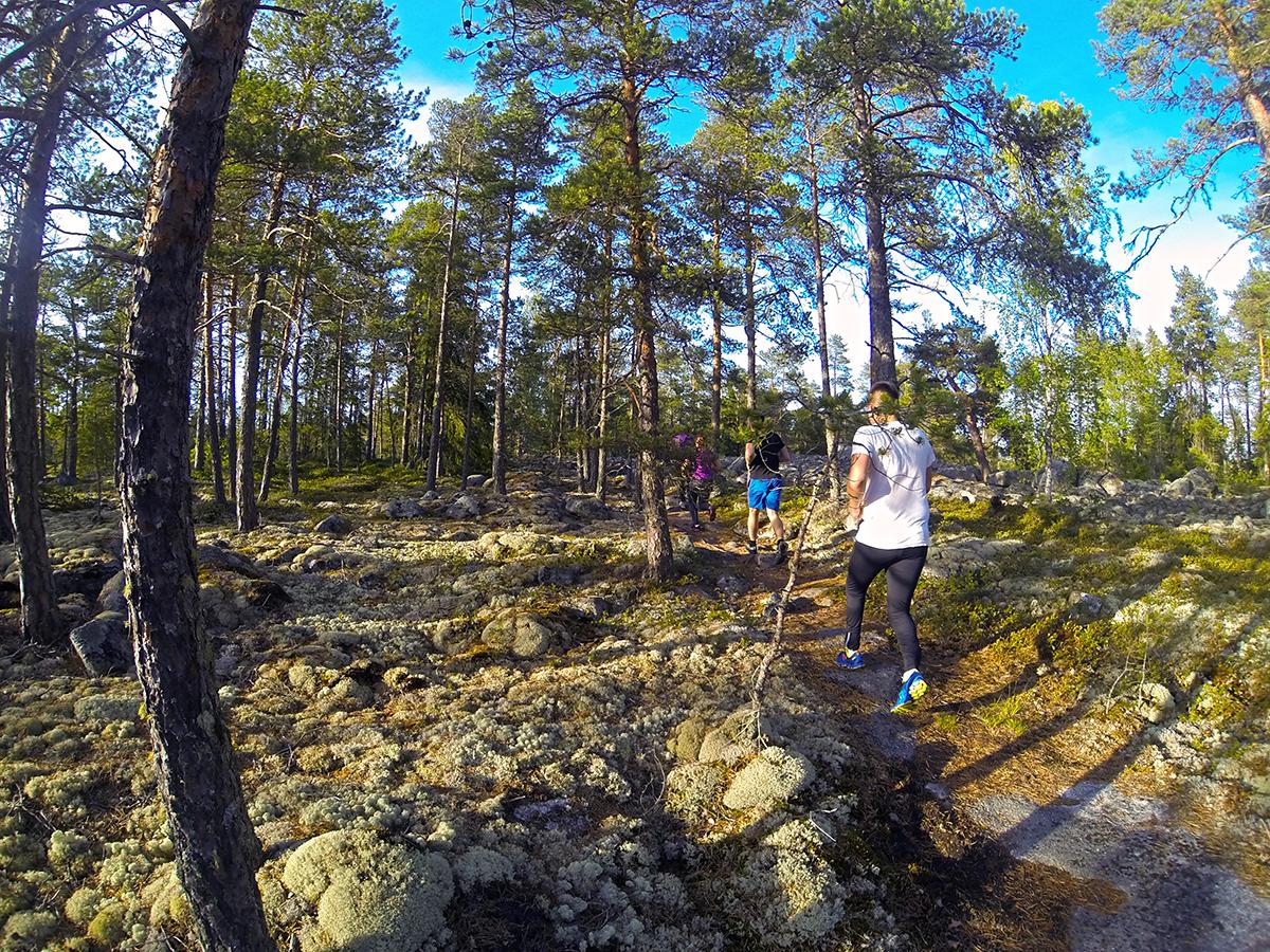 Terränglöpning i Larsmo