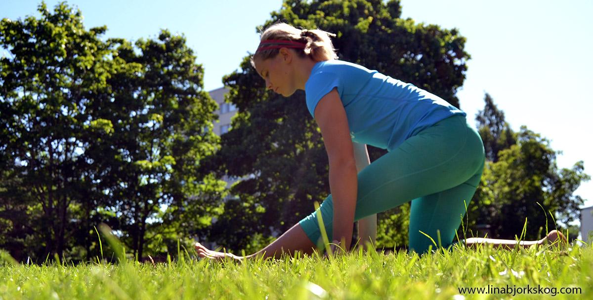rörlighet stretchning