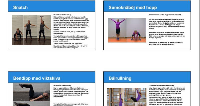 Träningsprogram pt-online