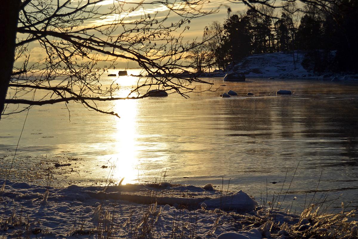 Vinterlöpning & veckans utmaning: Våga dig ut i kylan!