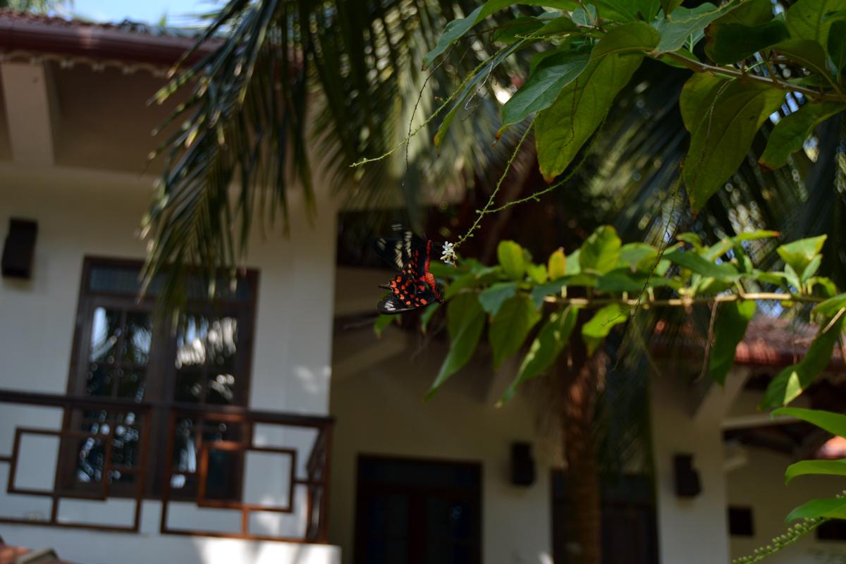 hotell kappalady
