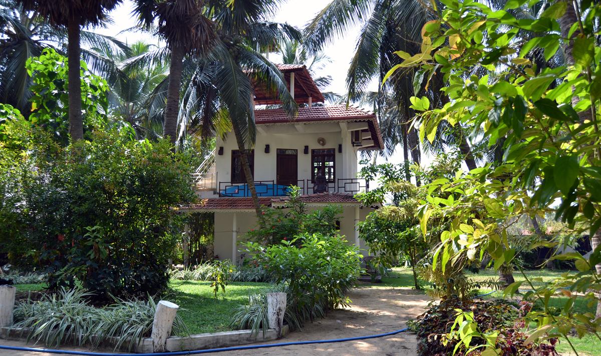 kappalady kite garden