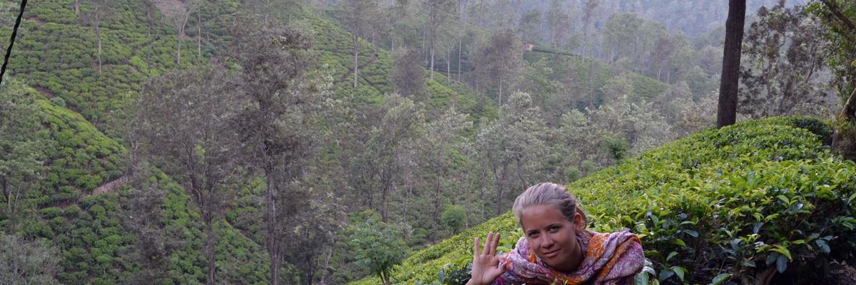 Sri Lanka – sydkusten och Ella