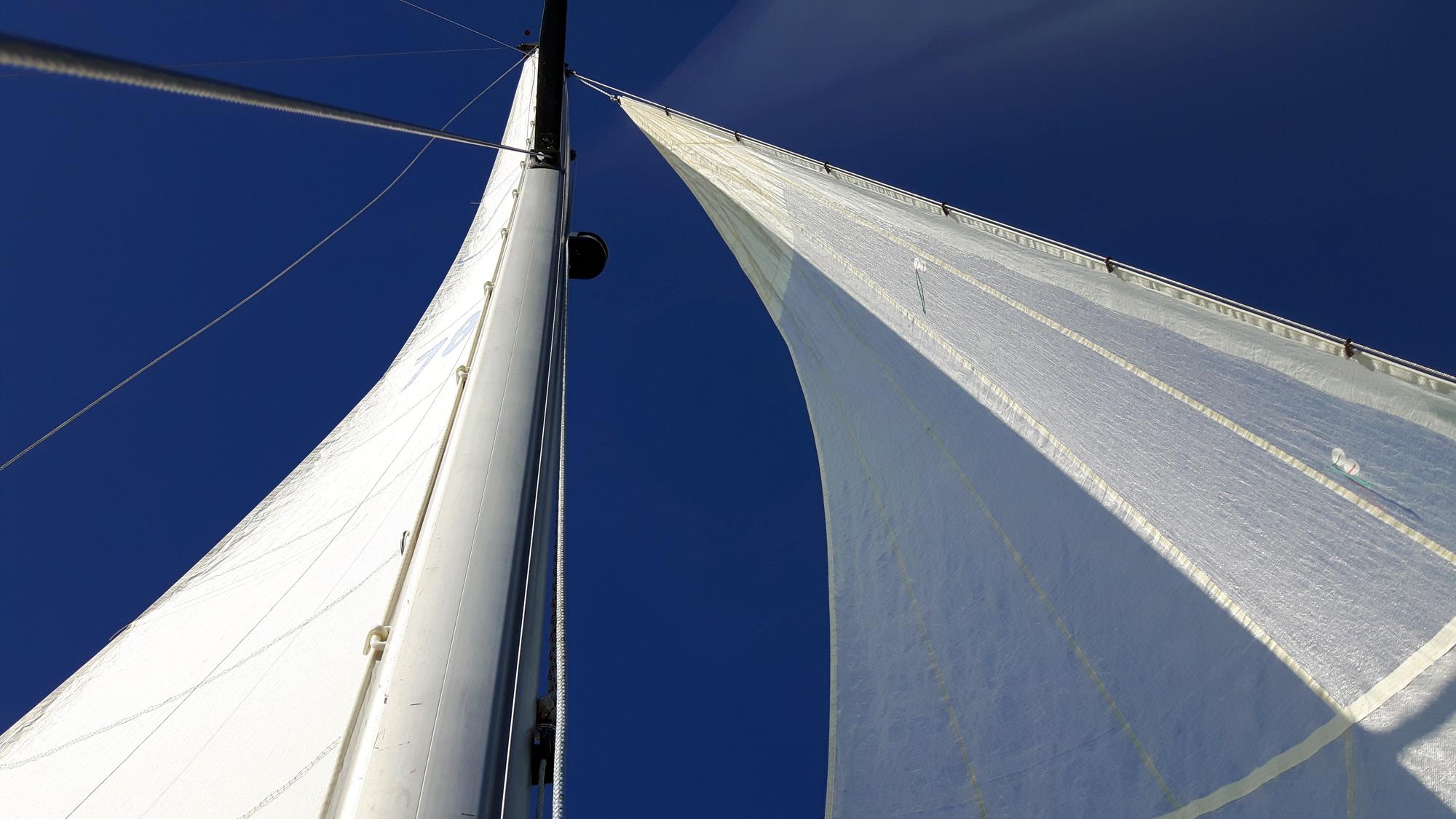 segling rönnskär3