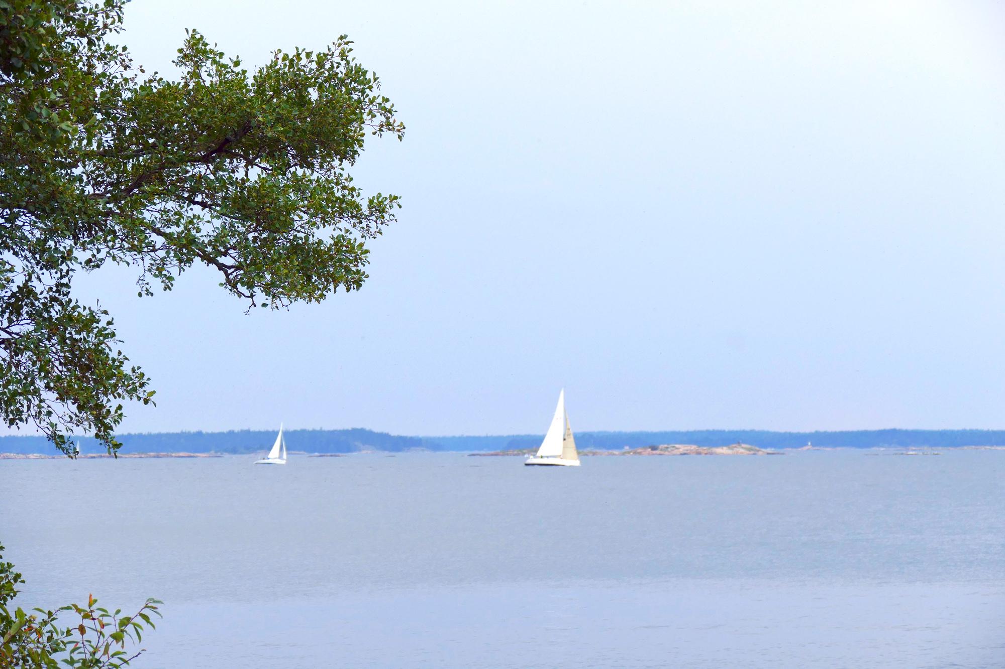 segling6
