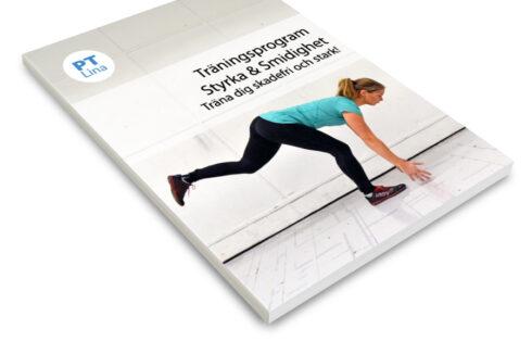 träningsprogram styrka & smidighet
