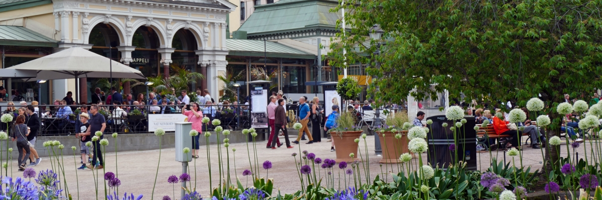 Två dygn med stadspuls i Helsingfors