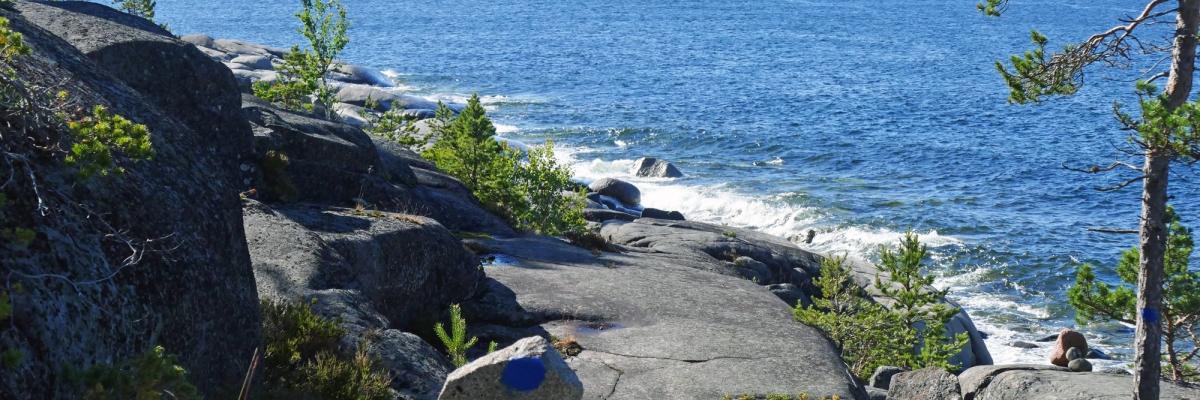 Seglingssemestern: Segling, vandring och äventyr på Höga kusten