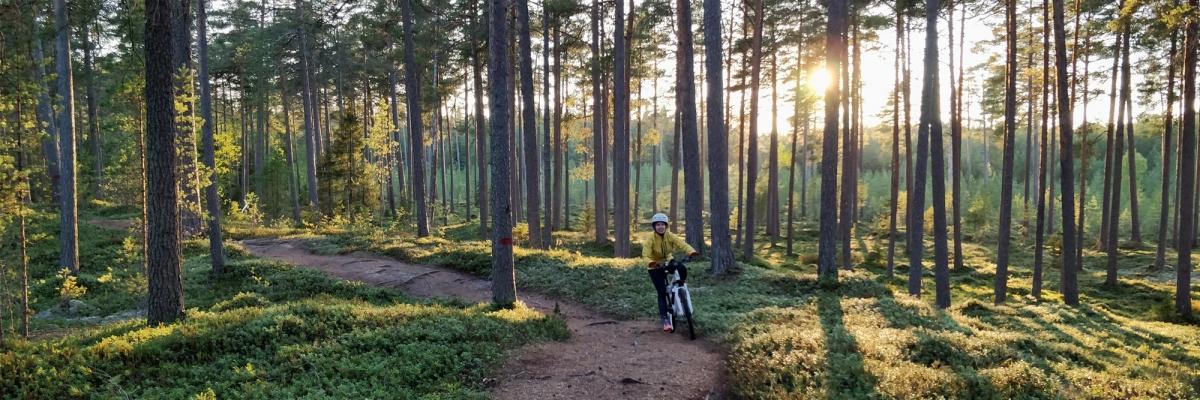 Mountainbike i Fäboda