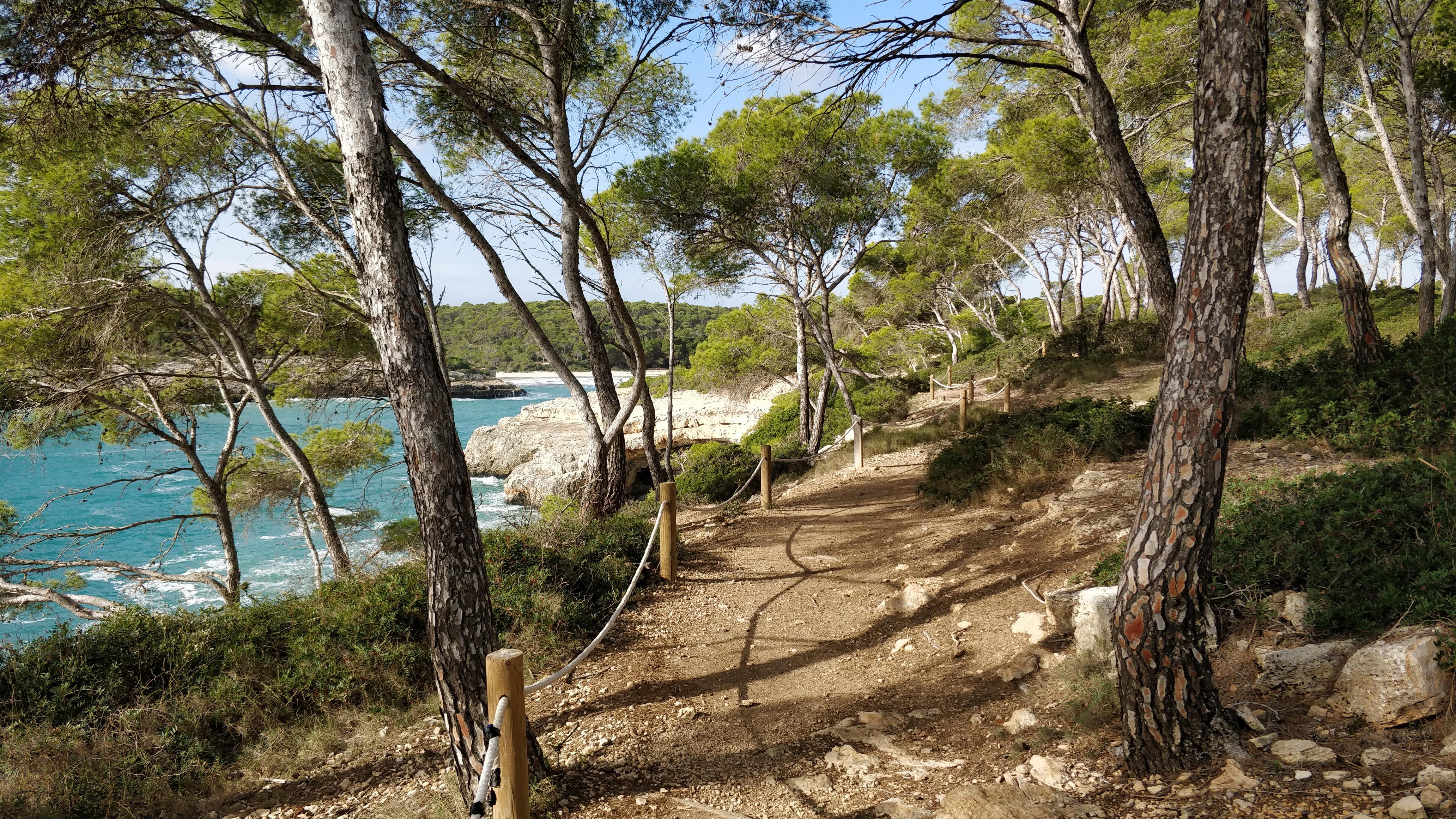 Resa till Mallorca i november