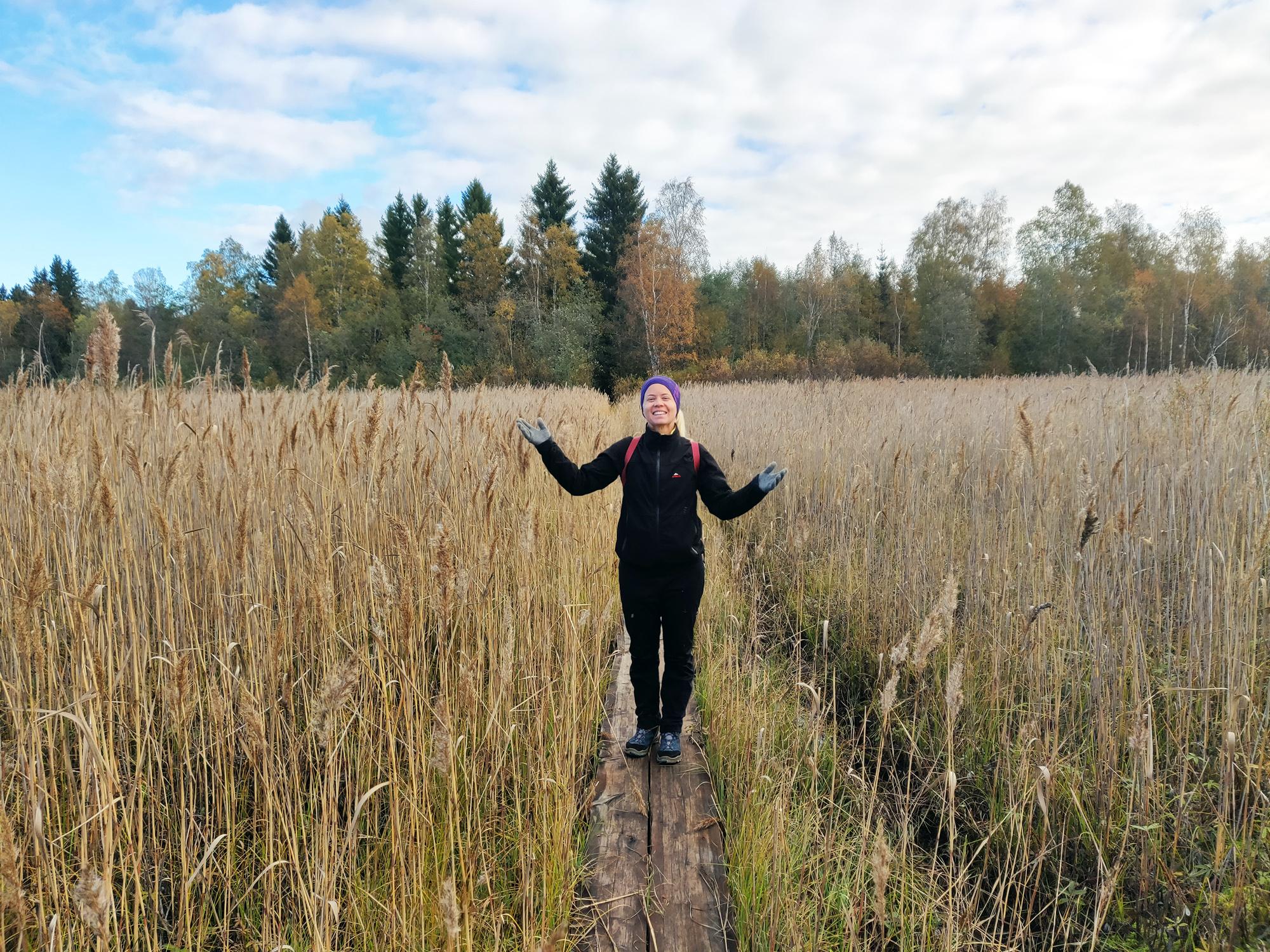 vandra i skogen