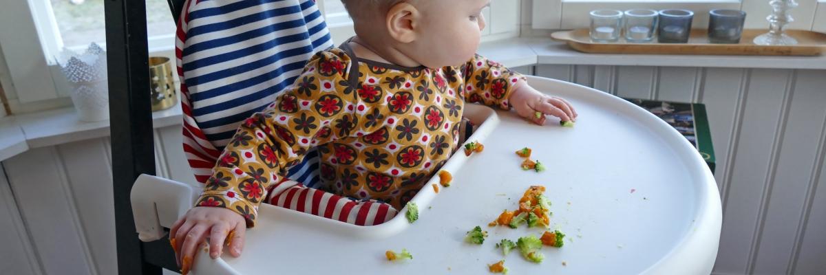 Plockmat för bebisar – tips & recept